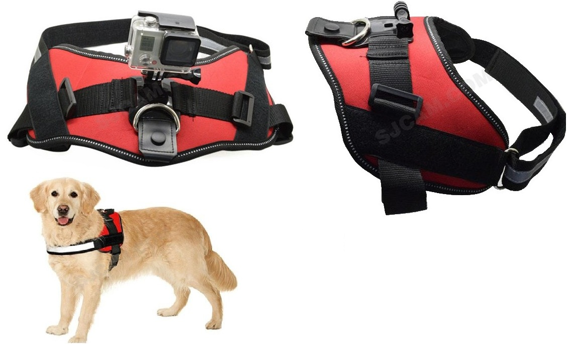 sj211-accessories-dogcat-harness-chest-strap-belt-mount-with-screw-for-sjcam-camera (1)